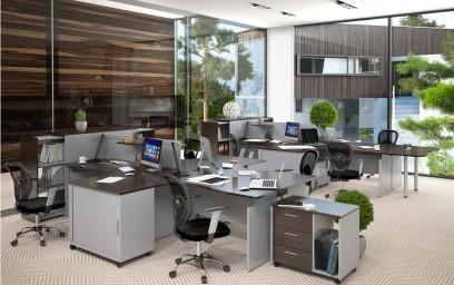 Эта мебель станет отличным вариантом для создания рабочего пространства сотрудников преуспевающей компании или серьезного госучреждения.